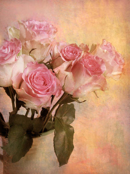 Photograph - Pastel Roses by Jessica Jenney