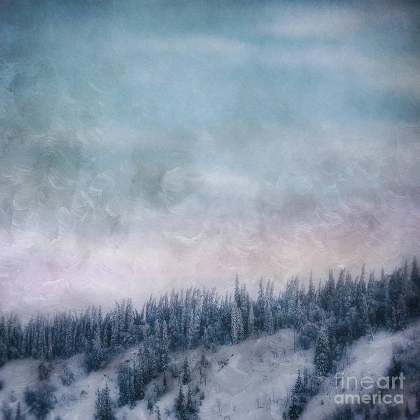 Treeline Photograph - Pastel Skies by Priska Wettstein