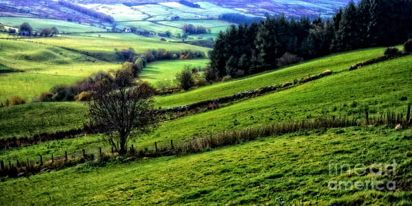 Photograph - Pastoral View  by Thomas R Fletcher