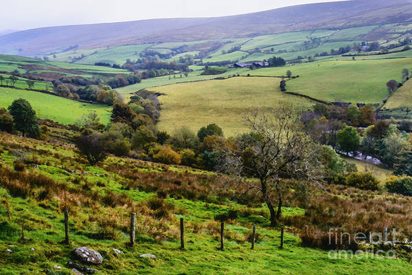Wall Art - Photograph - Patchwork Fields Northern Ireland by Thomas R Fletcher