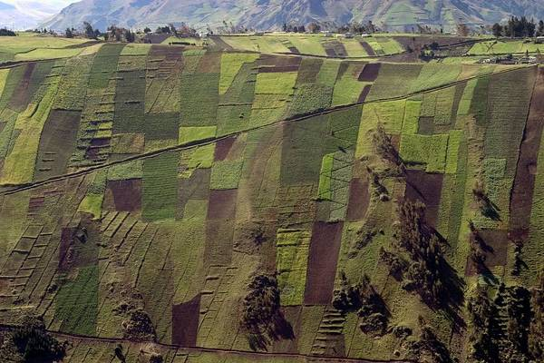 Wall Art - Photograph - Patchwork Fields by Peter Menzel/science Photo Library