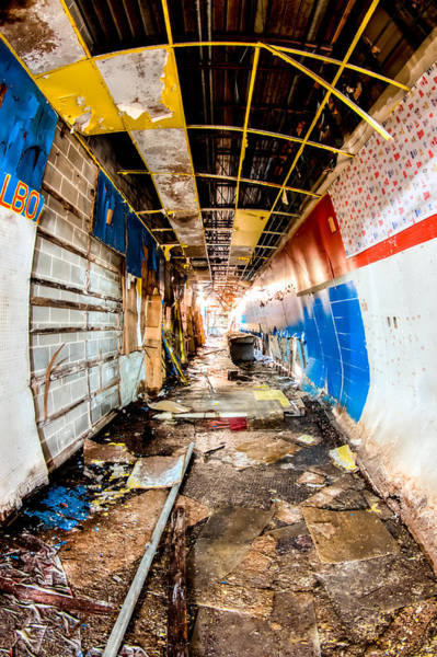 Wall Art - Photograph - Path Less Travelled  by Joshua Ball