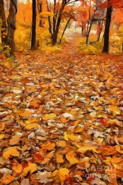 Photograph - Path Of Fallen Leaves by Edward Fielding