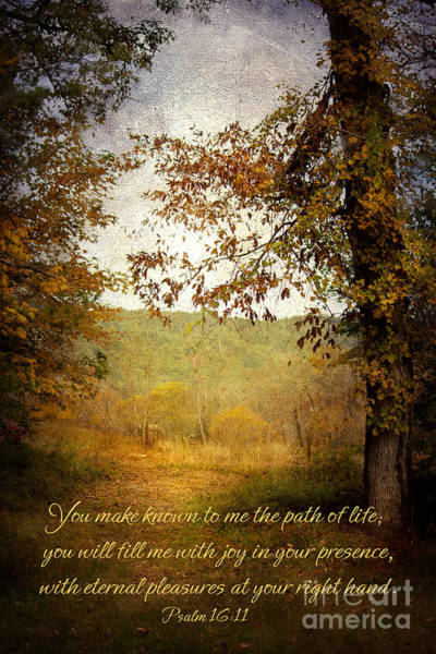 Scripture Photograph - Path Of Life by Lena Auxier
