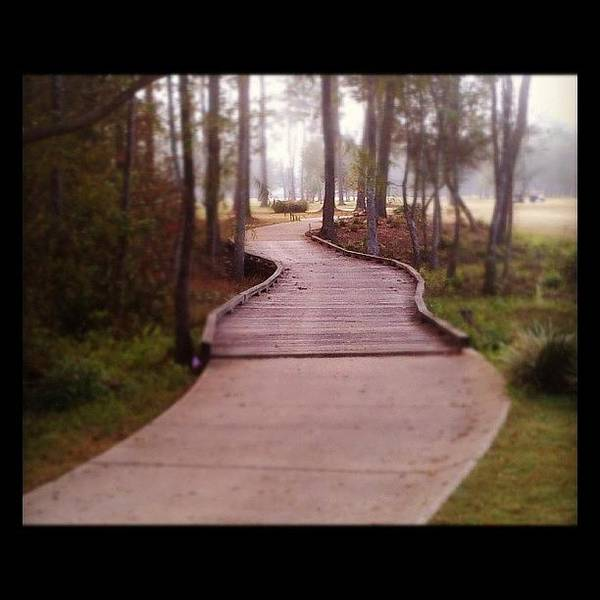 Sport Wall Art - Photograph - Path by Scott Pellegrin