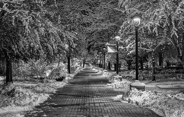 College Photograph - Path Through Eastern by Mark Kiver