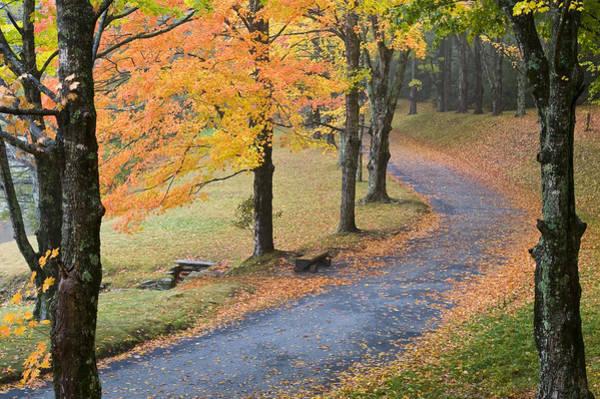 Photograph - Path Through Fall by Jim Dollar