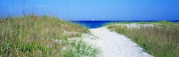 Panhandle Photograph - Path To Beach, Venice, Florida, Usa by Panoramic Images