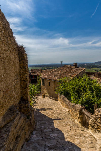 Chateauneuf Photograph - Path To Chateauneuf Du Pape by Anita Miller