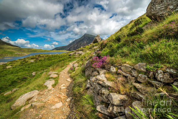 Photograph - Path To Lake Idwal by Adrian Evans