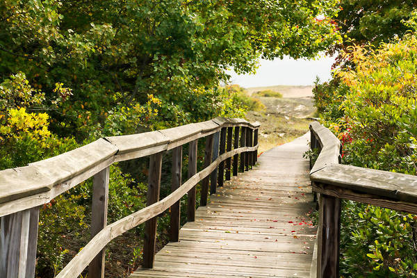 Photograph - Path To The Beach by Nancy De Flon