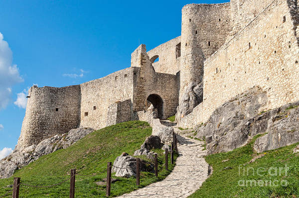Photograph - Path To The Castle by Les Palenik