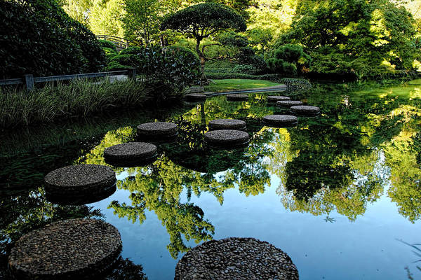 Photograph - Path To The Green Garden by Jonathan Davison