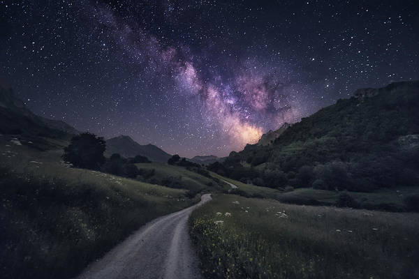 Path To The Stars Art Print by Carlos F. Turienzo