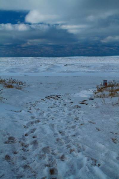 Wall Art - Photograph - Path Toward The Winter Beach by Dan Sproul