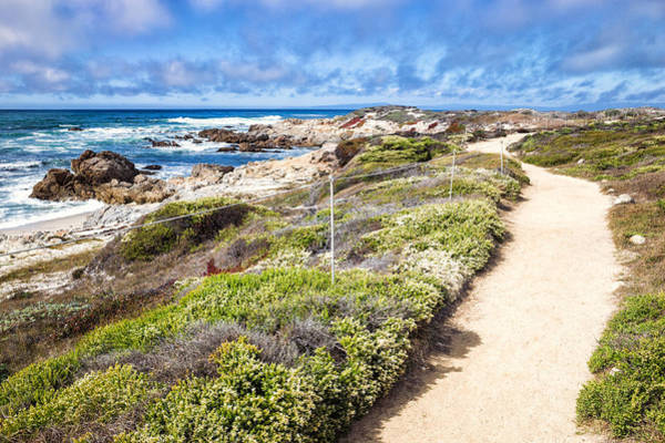 Photograph - Pathway At Asilomar State Beach by Priya Ghose