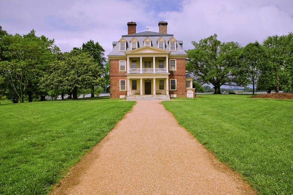 Charles Mansion Photograph - Pathway To Shirley Plantation Great by Panoramic Images