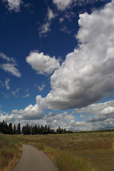 Photograph - Pathway Under Clouds by Ben Upham III