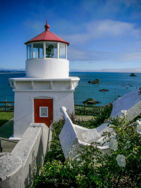 Photograph - Patrick's Point Lighthouse by Jim DeLillo