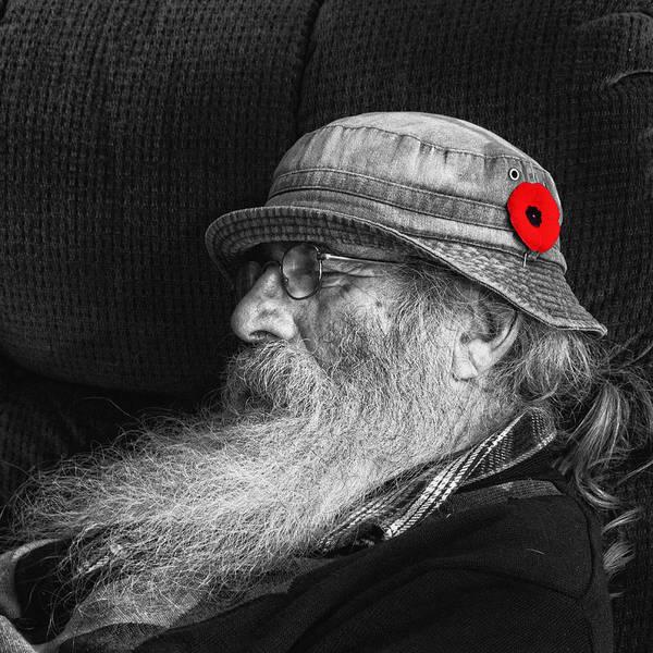 Napanee Photograph - Patriot Observing Two Minute Silence by John Herzog