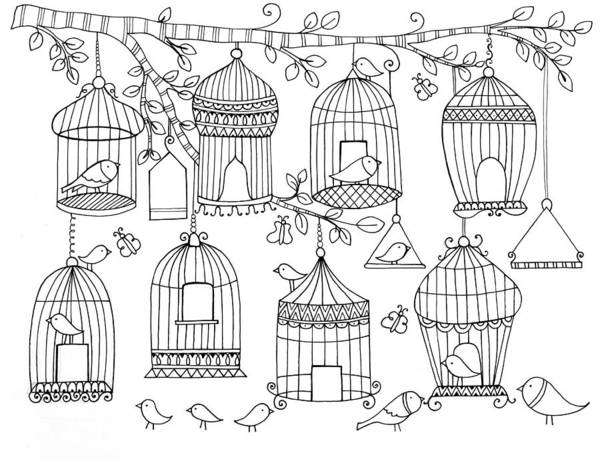 Colours Drawing - Pattern Birdcages by MGL Meiklejohn Graphics Licensing