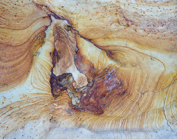 Grand Staircase National Monument Photograph - Pattern Of Layers On Sandstone Rock by Panoramic Images