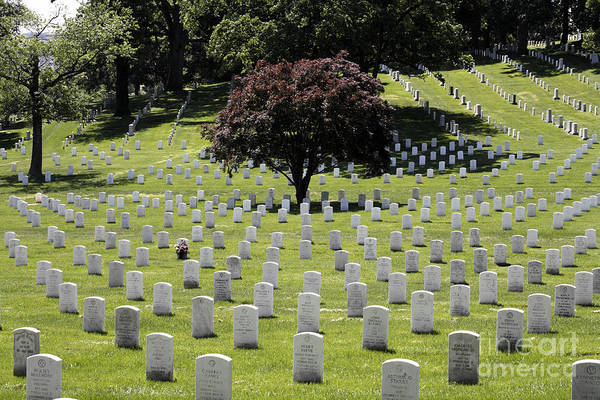 Photograph - Patterns Of Graves At Arlington National Cemetery by William Kuta