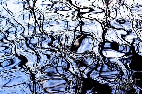 Wall Art - Photograph - Patterns Reflected On A Water Surface by Bernard Jaubert