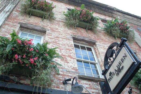 Paula Wall Art - Photograph - Paula Deen Savannah Restaurant Flower Boxes by Kathy Fornal