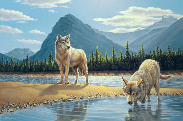 Mountain Lake Painting - Pause For A Drink-wolves by Paul Krapf