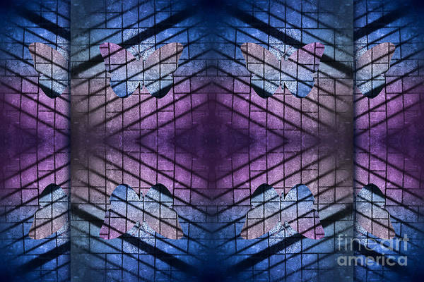 Photograph - Pavement Butterfly In Blue And Purple by Beverly Claire Kaiya