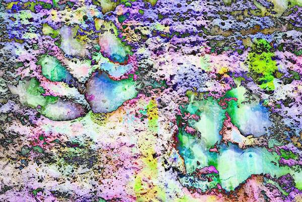 Photograph - Paw Prints Vibrant Pastel by Dorothy Berry-Lound