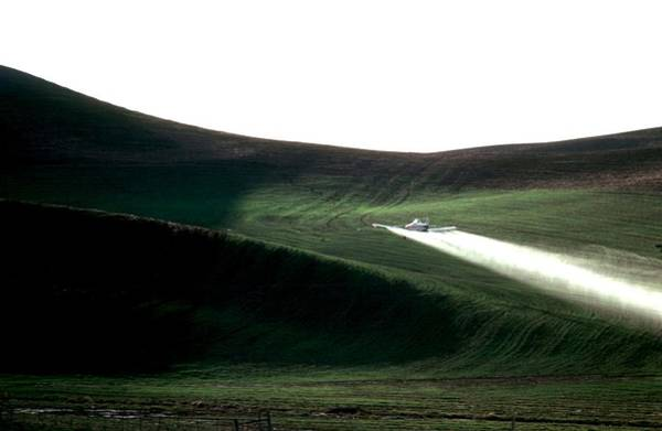 Photograph - Pawnee 1 6028 by Jerry Sodorff
