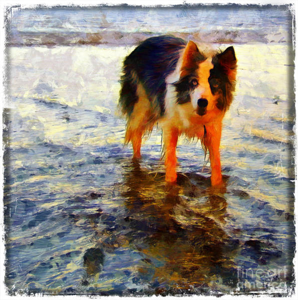 Painting - Paws For Thought by Vix Edwards
