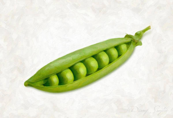 Wall Art - Painting - Pea Pod by Danny Smythe