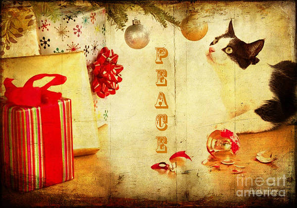 Digital Art - Peace And Joy To All by Chris Armytage