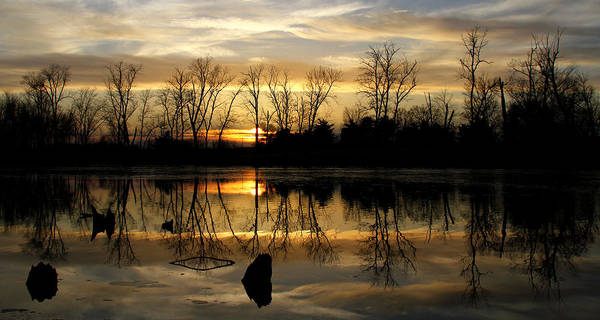 Photograph - Peace And Quiet by Heather Kenward
