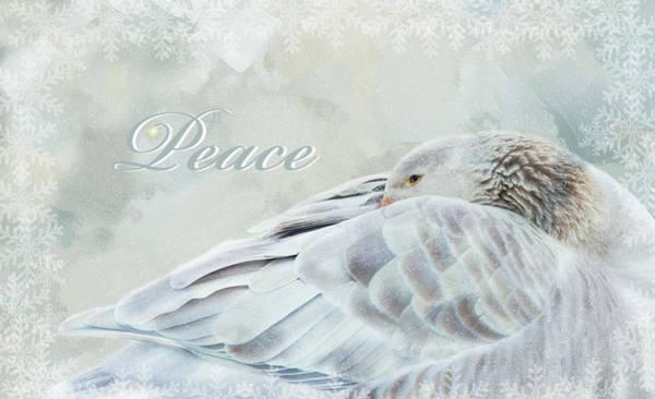 Photograph - Peace by Robin-Lee Vieira