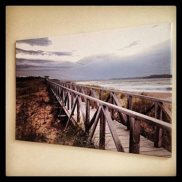Charity Wall Art - Photograph - Peaceful Boardwalk Canvas #walk by Samantha Charity Hall