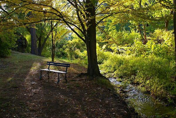 Photograph - Peaceful Creek by Ben Upham III
