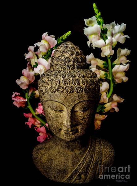 Buda Photograph - Peaceful Dragons by Mitch Shindelbower