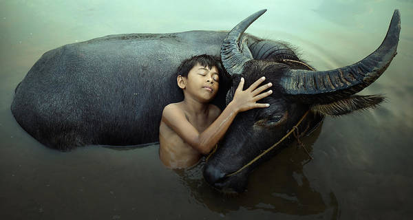 Wall Art - Photograph - Peaceful by Fahmi Bhs