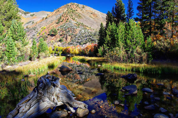 Bishop Photograph - Peaceful Fall Morning by Scott McGuire