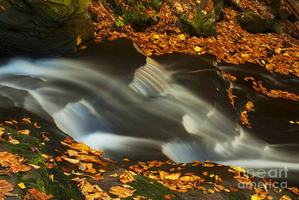 Photograph - Peaceful Falls by Paul W Faust -  Impressions of Light