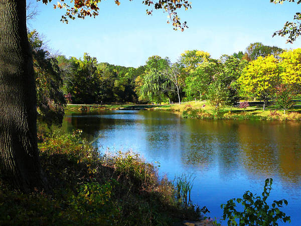 Photograph - Peaceful Lake by Susan Savad