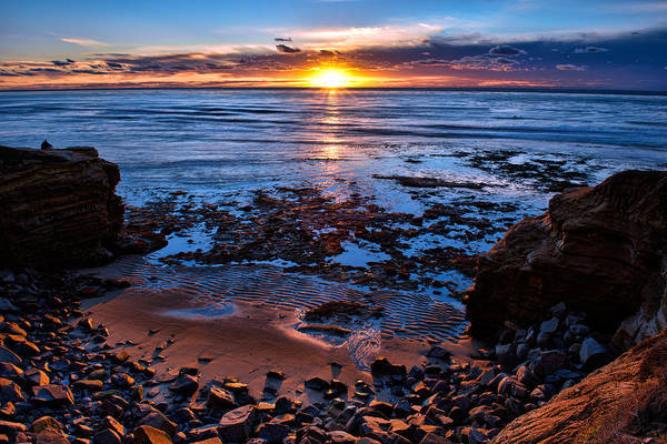 Photograph - Peaceful by Mark Whitt