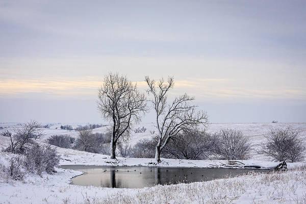 Photograph - Peaceful Pond - Winter by Scott Bean