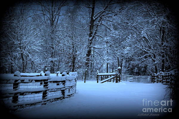 Photograph - Peaceful Snowy Morning by Rabiah Seminole