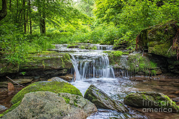 D800 Photograph - Peaceful Stream by Michael Ver Sprill
