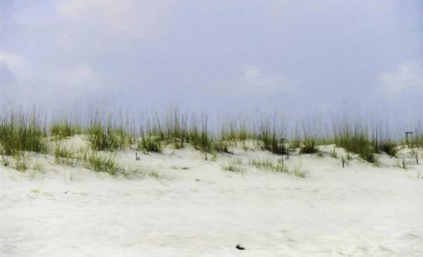 Gulf Shores Alabama Painting - Peaceful Grass by Barb Hauxwell